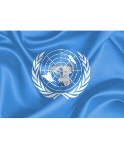 Jungtinių Tautų vėliava