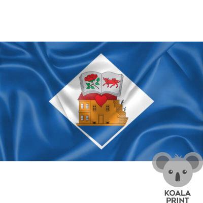 Ukmergės vėliava