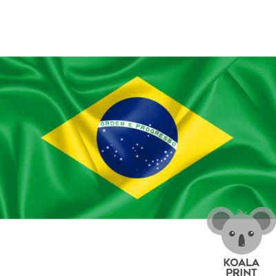 Brazilijos vėliava