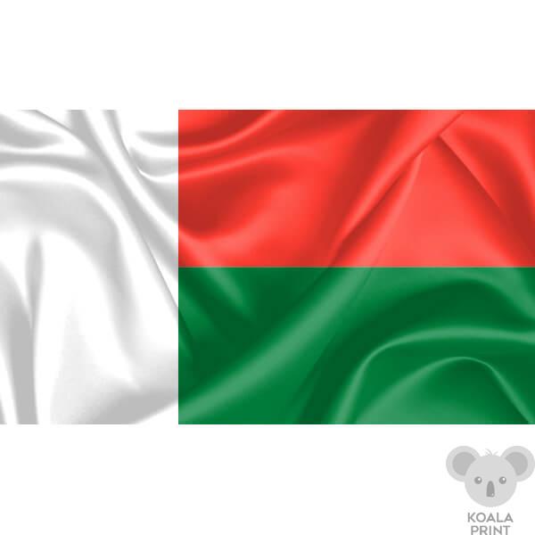 Madagaskaro vėliava