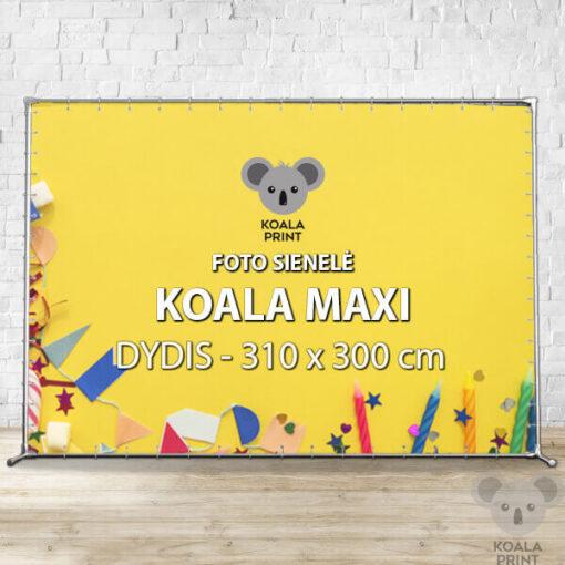 Foto sienelė Koala Maxi - 310 x 300 cm
