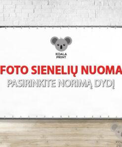 Foto sienelių Koala nuoma