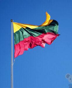 Lietuvos vėliava SPAUSTA