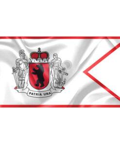 """Žemaitijos vėliava """"Su laikytojais ir meška, be antkaklio"""""""