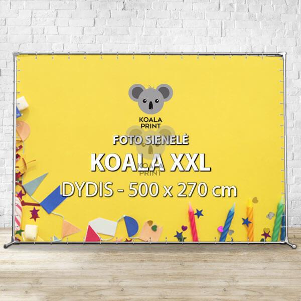 Foto sienelė Koala XXL - 500 x 270 cm